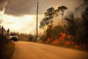 Florida Public Adjuster for Fire Damage